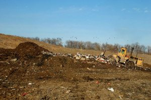 Landfill Environmental Consultants